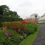 National Botanic Garden in Dublin
