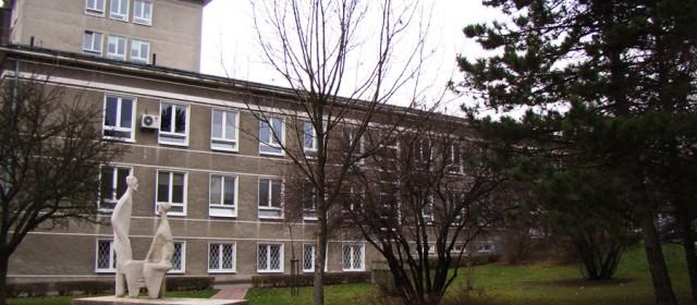 Szpital przy ul. Jaczewskiego się zazieleni