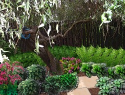 ompozycji roślin cieniolubnych