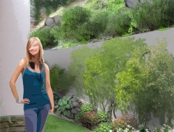 Wizualizacja przestrzeni za pensjonatem - zakątek roślin cieniolubnych