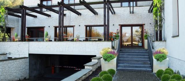 Projekt aranżacji zieleni w hotelu w Kazimierzu Dolnym