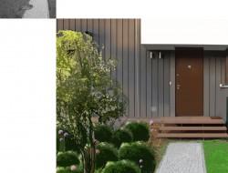 Strefa wejściowa - kompozycja bukszpanów o kulistym kształcie i czosnków ozdobnych oraz dereń kousa