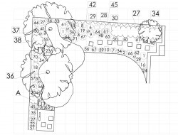Schemat nasadzeń roślinnych przy tarasie