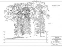 Przekrój przez projektowany teren z tarasem widokowym