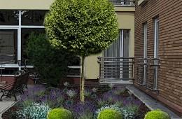 Projekt rekompozycji zieleni przy Państwowym Instytucie Weterynaryjnym w Puławach