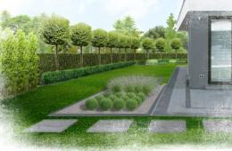 Ogród w Lublinie VII