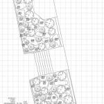 Schemat rekompozycji nasadzeń roślinnych