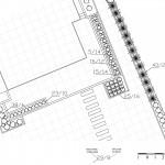 Schemat rozmieszczenia projektowanych roślin