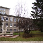 Zieleń wokół szpitala
