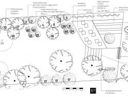 Rzut szczegółowy projektu zagospodarowania terenu