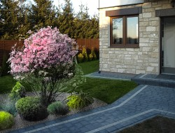 Wizualizacja strefy wejściowej - koncepcja rabaty o kształcie wycinka koła, w centrum magnolia