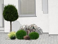 Wizualizacja kompozycji roślin przy wejściu