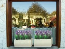 Dekoracja lawendą zewnętrznych parapetów okiennych restauracji