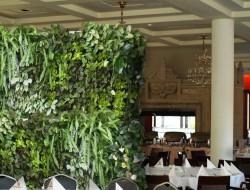 Mobilne zielone ściany jako parawany w sali restauracyjnej