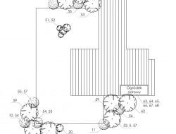 Schemat techniczny stawu kąpielowego oraz tarasu z projektem nasadzeń